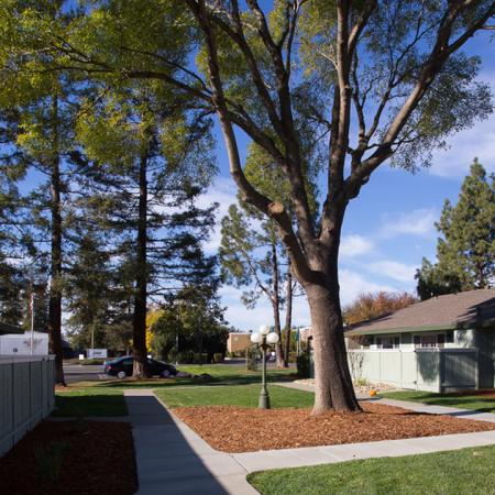 Davis CA Apartments | Cottages on 5th