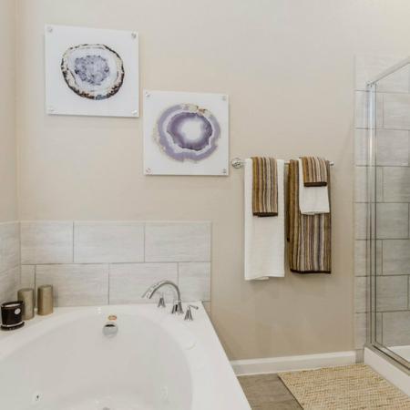 Elegant Master Bathroom | North Austin Apartments | The Mansions at Travesia