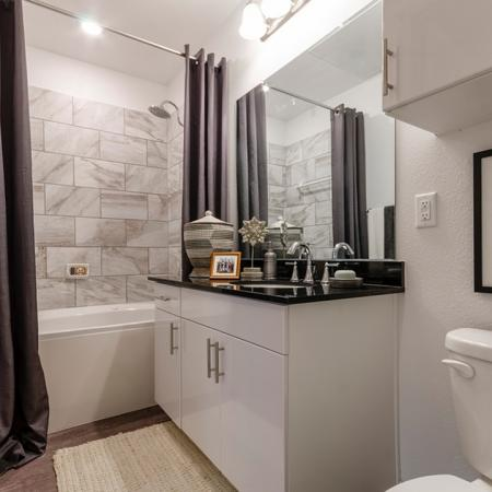 Elegant Bathroom | Apartments For Rent New Braunfels TX | The Luxe at Creekside