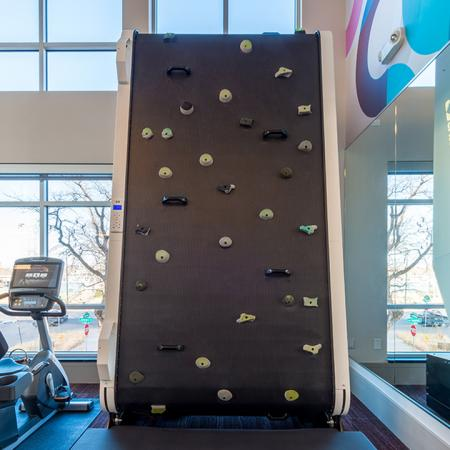 Rock Wall in Gym | Modera Observatory Park