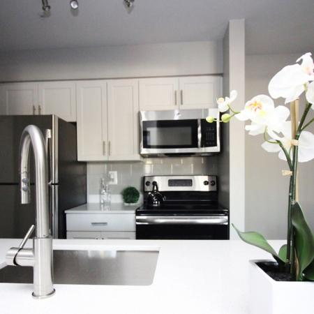 Upgraded Kitchen with White Quartz Counters | Alister Columbia