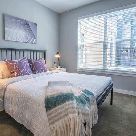 Light-Filled Bedrooms | Modera Medford